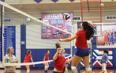 Volleyball takes pre-District by storm
