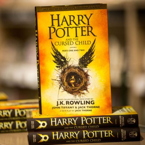 New Harry Potter book pleases reader