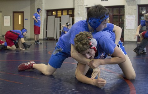 Westlake places fourth at State wrestling meet