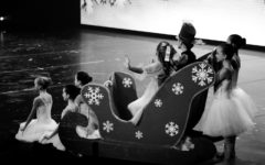 Nutcracker photo gallery